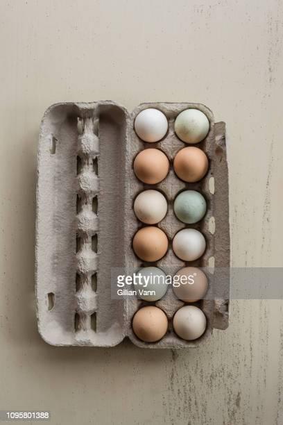 mixed coloured organic eggs - dozen stock pictures, royalty-free photos & images