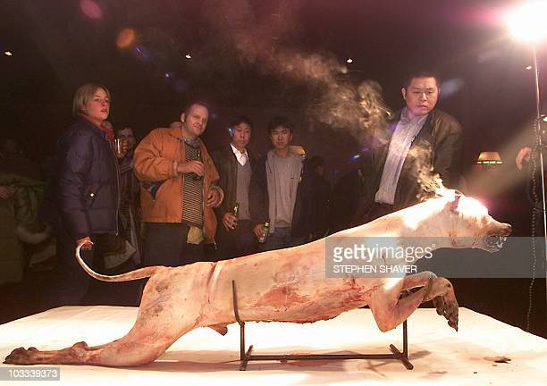 A mixed crowd of Chinese and foreigners watch a magnified highintensity light burn through the head of a skinned dead dog 17 February 2000 during a...