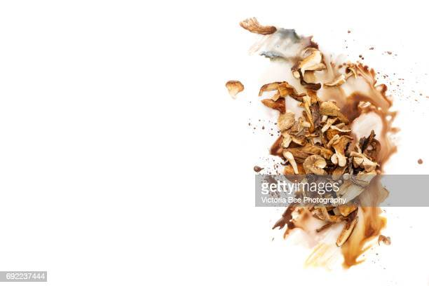 Mixed dried mushrooms, top view. Creative food shot with watercolor.