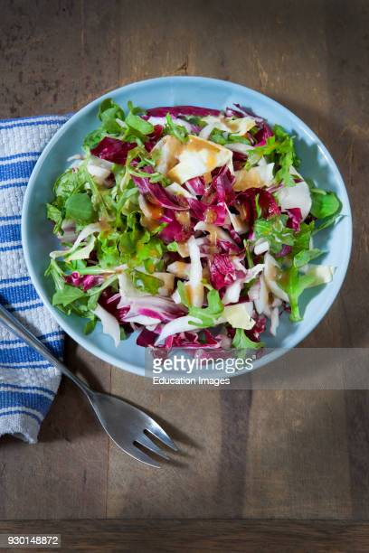 Mixed Green Salad with Lettuce Radicchio Red Leaf Lettuce Curly Endive