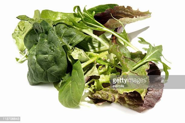 mixed greens cut out on white - green salad stock pictures, royalty-free photos & images