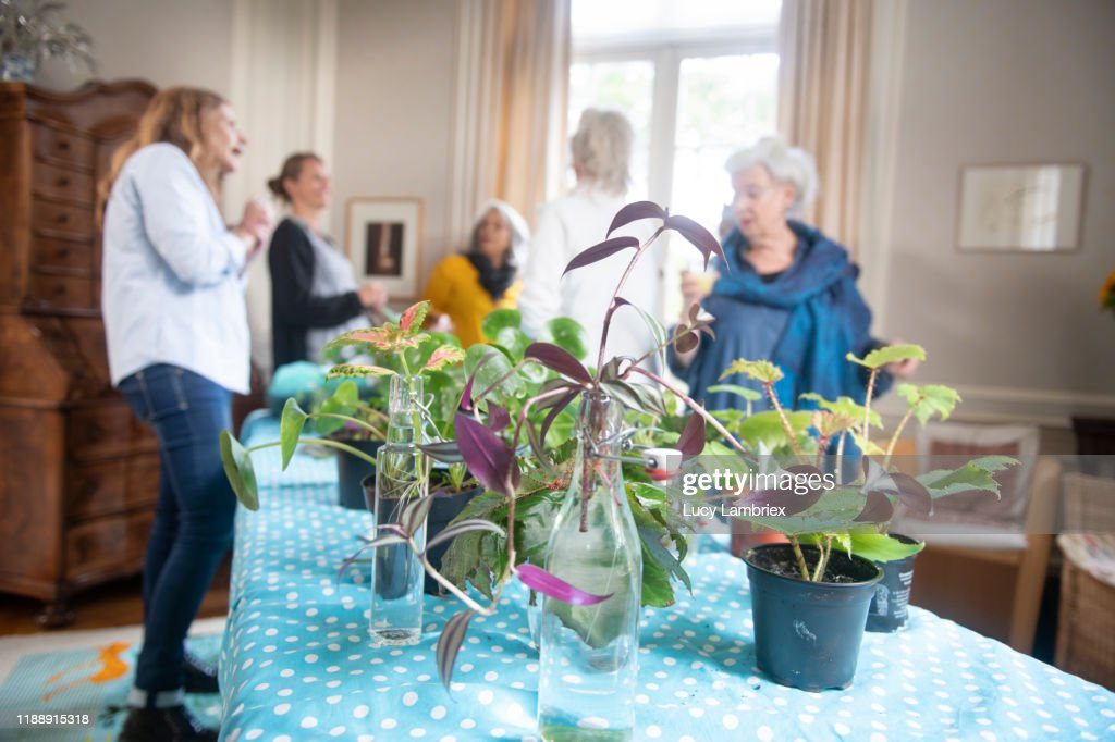 Mixed Group Of Women At A Plant Care Propagation Workshop