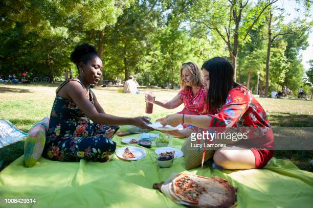 Mixed group of women out on a picnic in the park, serving food