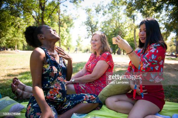 Mixed group of women out on a picnic