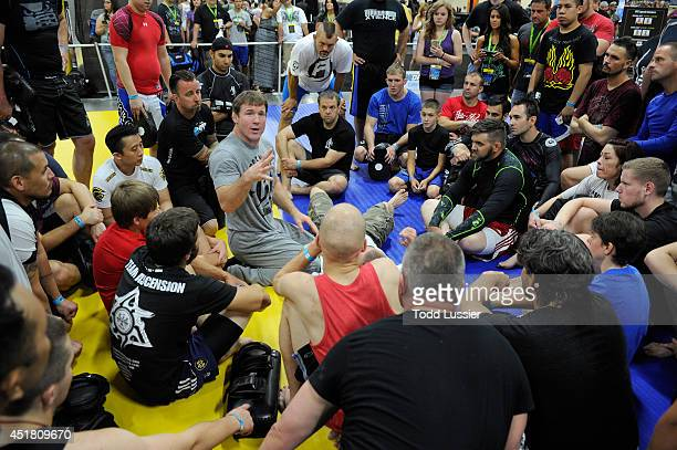Mixed martial artist Matt Hughes provides technique instruction during the UFC Fan Expo at the Mandalay Bay Convention Center on July 5 2014 in Las...