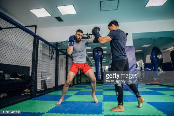 mixed martial arts fighters sparing in gym - mixed martial arts stock pictures, royalty-free photos & images
