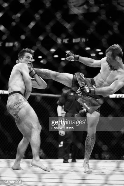 Donald Cerrone in action during Lightweight preliminary undercard bout vs Alexander Hernandez at Barclays Center. Brooklyn, NY 1/19/2019 CREDIT:...