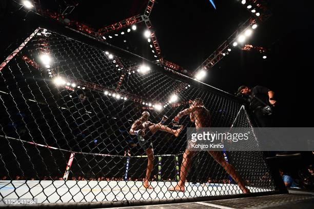 UFC 235 Kamaru Usman in action vs Welterweight bout vs Tyron Woodley at TMobile Arena Las Vegas NV CREDIT Kohjiro Kinno