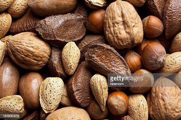 mixed nuts in shells - brazil nut stock photos and pictures