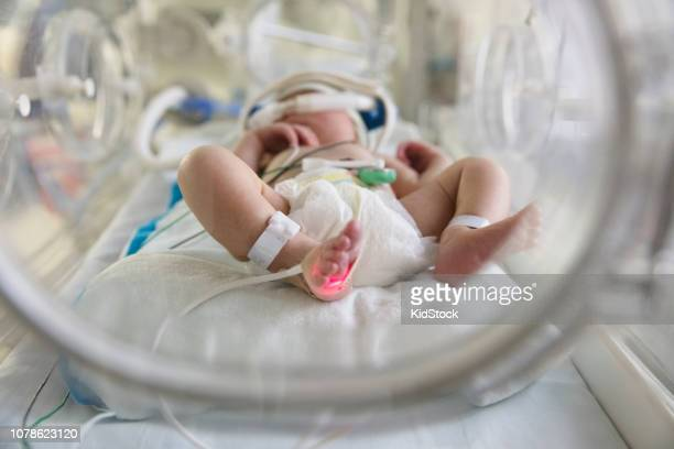 Mixed race baby in intensive care unit