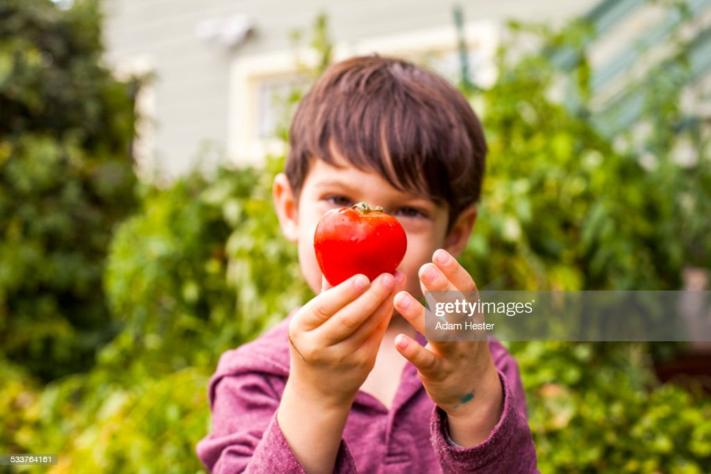 Mixed race boy admiring fresh fruit in garden : Foto stock