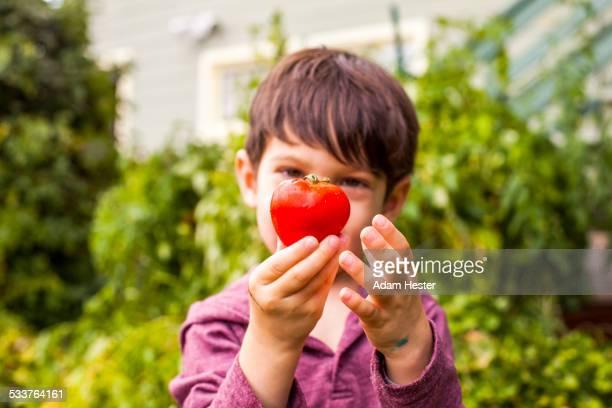 Mixed race boy admiring fresh fruit in garden