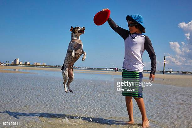 Mixed Race boy playing with dog on beach with plastic disc