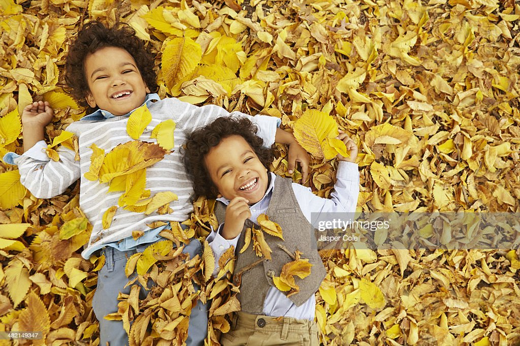 Mixed race boys laying in yellow autumn leaves : Stock Photo