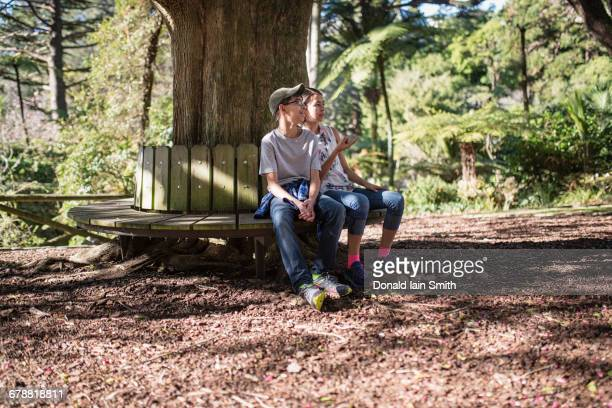 Mixed Race brother and sister sitting on bench at tree