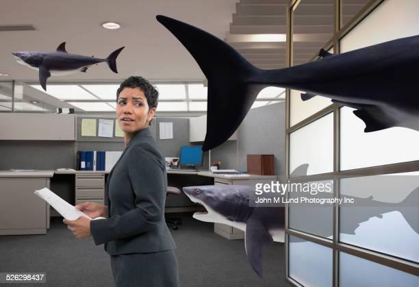 Mixed race businesswoman watching shark in office