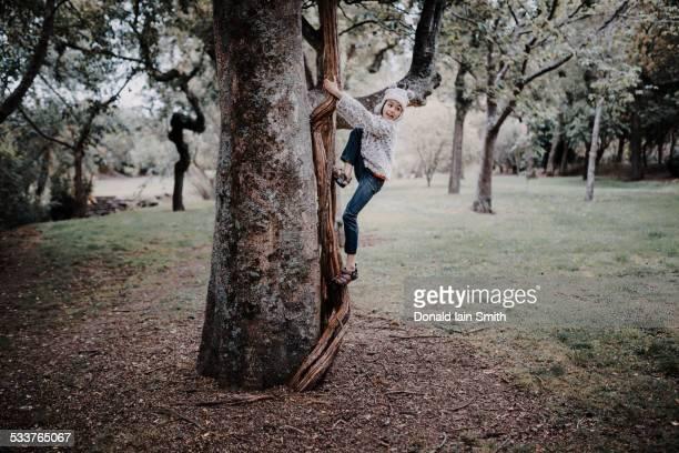 Mixed race girl climbing tree in park