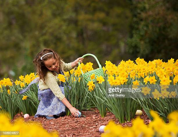 mixed race girl in field gathering easter eggs - easter flowers stock pictures, royalty-free photos & images