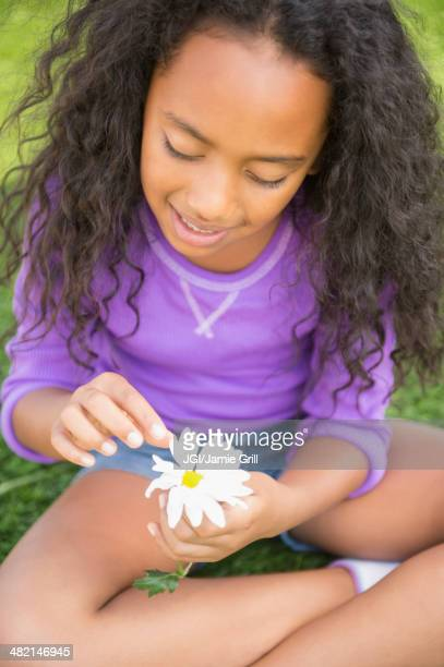 Mixed race girl picking petals off daisy