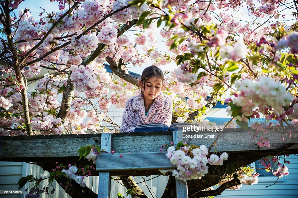 Mixed race girl reading book in tree house : Stock Photo