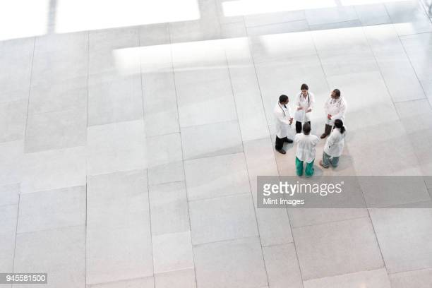 mixed race group of doctors meeting in lobby of large hospital - building atrium stock pictures, royalty-free photos & images