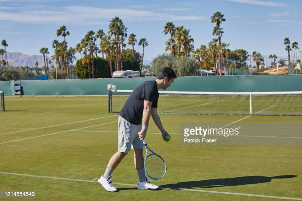 mixed race man prepares to serve in tennis on grass court - grass court stock pictures, royalty-free photos & images