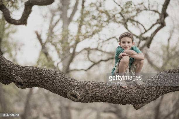 Mixed race of boy crouching on tree branch