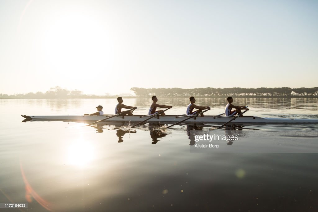 Mixed race rowing team training on a lake at dawn : Stock-Foto