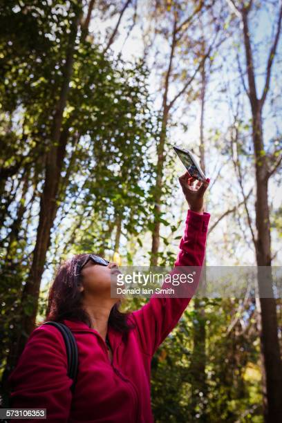 Mixed race woman photographing trees in forest