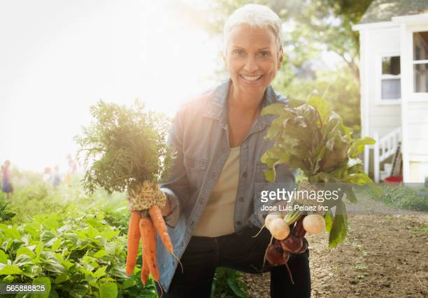 Mixed race woman picking vegetables in garden