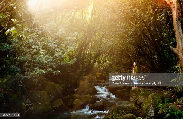 mixed race woman standing on rocks in forest near river - eskapismus stock-fotos und bilder