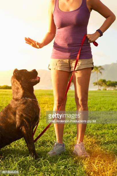 mixed race woman training dog in field - 訓練犬 ストックフォトと画像