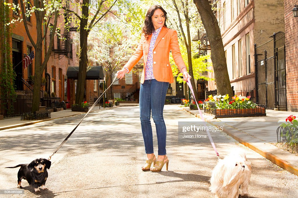 Mixed race woman walking dogs on city street : Stock Photo