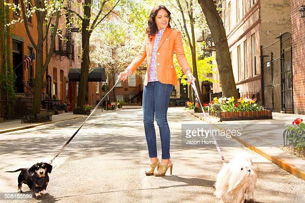 Mixed race woman walking dogs on city street