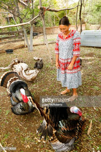 Mixed race woman watching turkeys and laughing