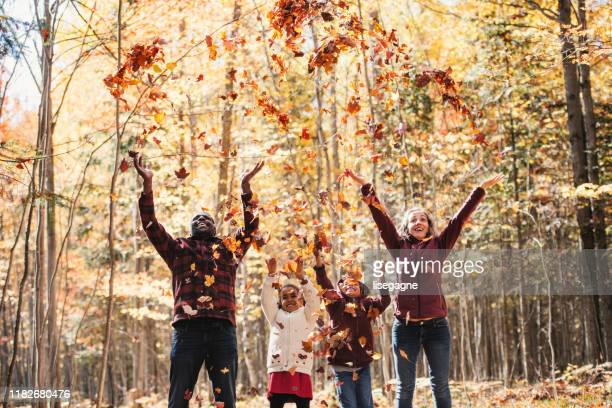 mixed raced family in a forest, throwing maple leaves - mixed race person stock pictures, royalty-free photos & images