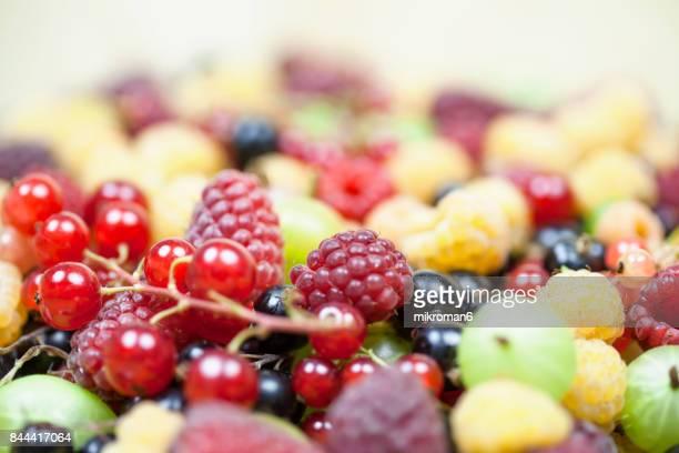 Mixed Summer berries Fruits
