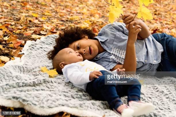 """raza mixta hermano mayor y hermanita disfrutando del otoño en el parque urbano. - """"martine doucet"""" or martinedoucet fotografías e imágenes de stock"""