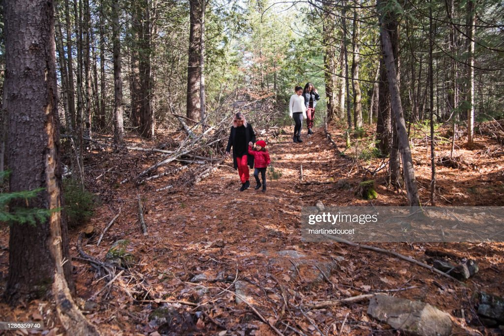 Mixed-race family walking in the woods in autumn. : Stock Photo