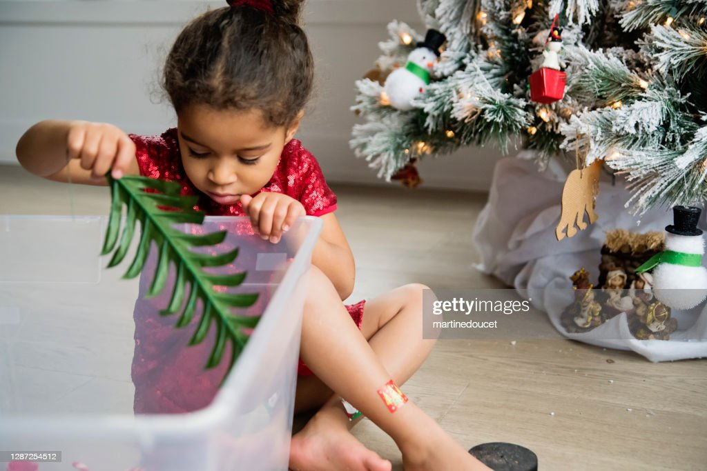 Mixed-race little girl decorating the Christmas tree. : Stock Photo