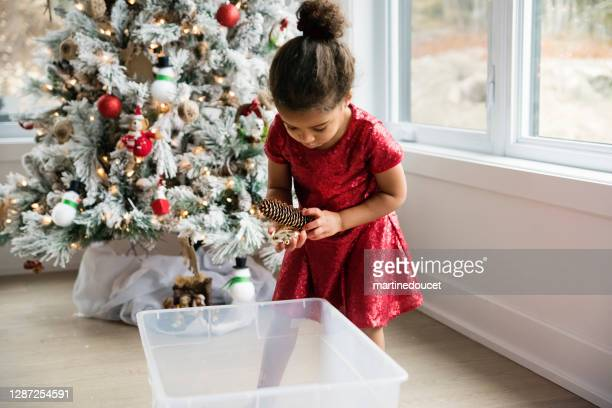 """mixed-race little girl decorating the christmas tree. - """"martine doucet"""" or martinedoucet stock pictures, royalty-free photos & images"""