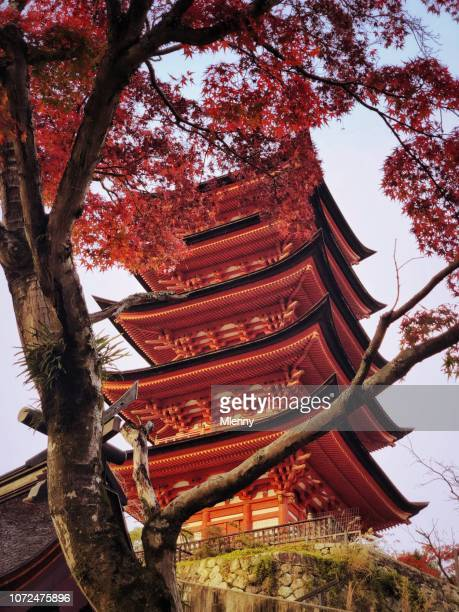 pagoda de miyajima japón otoño rojo - hiroshima fotografías e imágenes de stock