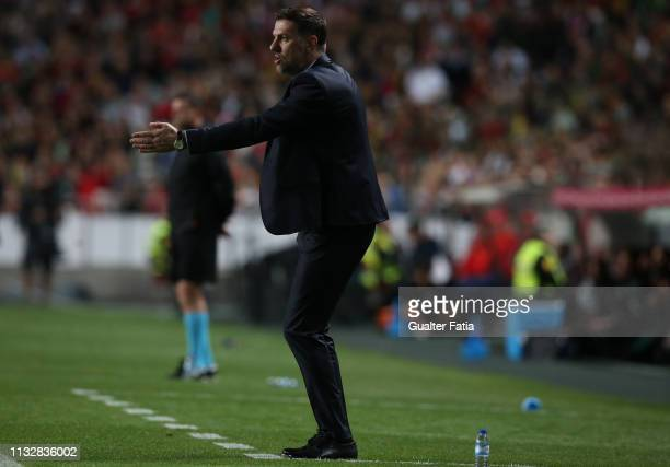 Mladen Krstajic of Serbia in action during the UEFA EURO 2020 Qualifier match between Portugal and Serbia at Estadio da Luz on March 25 2019 in...
