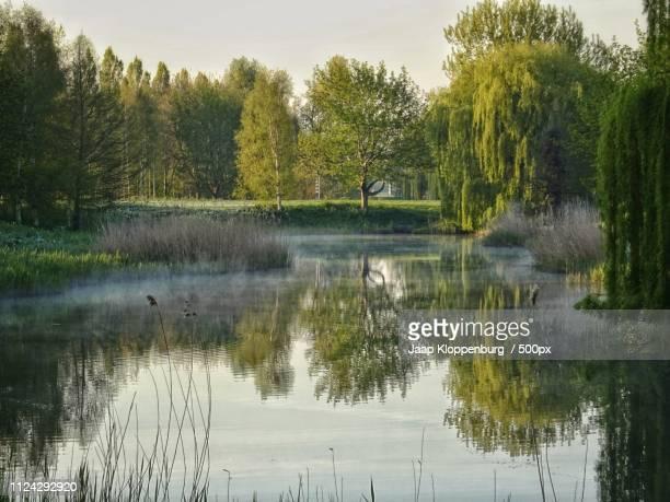 mmmmorning filmwijk - flevoland stockfoto's en -beelden