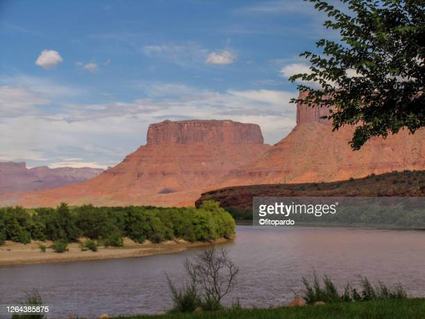 moab landscape on the desert - colorado river stock pictures, royalty-free photos & images