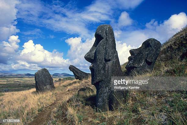 Moai statues at Rano Raraku which is a volcanic crater located on the lower slopes of Terevaka in the Rapa Nui National Park on Easter Island in...