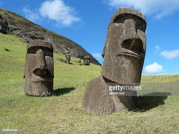 Moais am erloschenen Vulkan Rano Raraku der einstigen Produktionsstaette der mehr als 900 geheimnisvollen Statuen Durch sie wurde die Osterinsel ein...