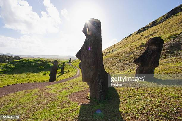 Moais By The Quarry On The Outer Slope Of The Rano Raraku Volcano Rapa Nui Chile