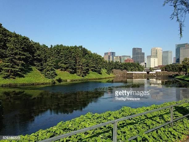 moat surrounding imperial palace, tokyo japan - imperial palace tokyo stock pictures, royalty-free photos & images