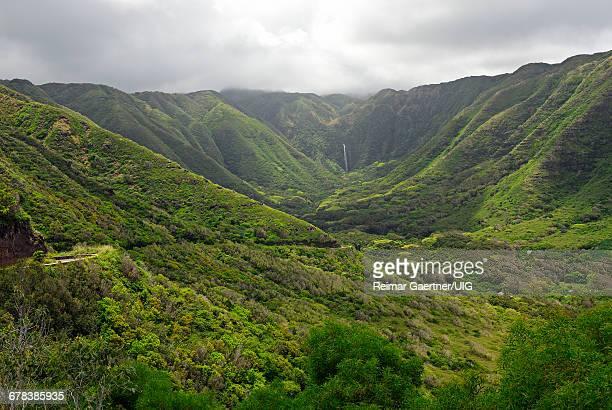moaula falls - human face foto e immagini stock